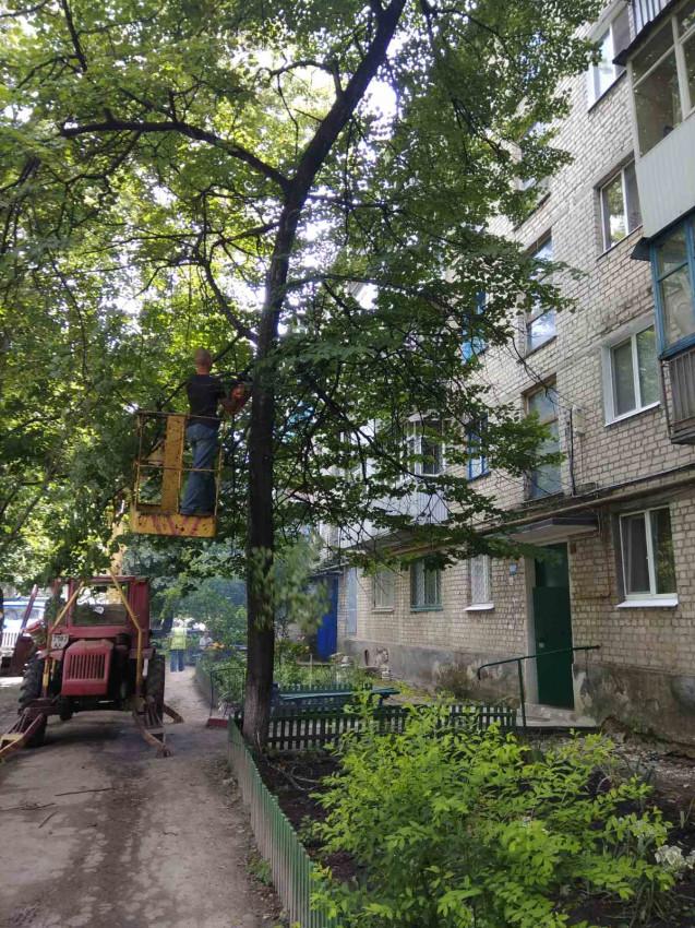 Альбом: Звіт КП «Жилсервіс» про виконану роботу з обслуговування житлового фонду та благоустрою міста за період з 25.06.2021 по 01.07.2021 року.