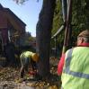Альбом: Звіт КП «Жилсервіс» про виконану роботу з обслуговування житлового фонду та благоустрою міста за період з 08.10.2021 по 14.10.2021 року
