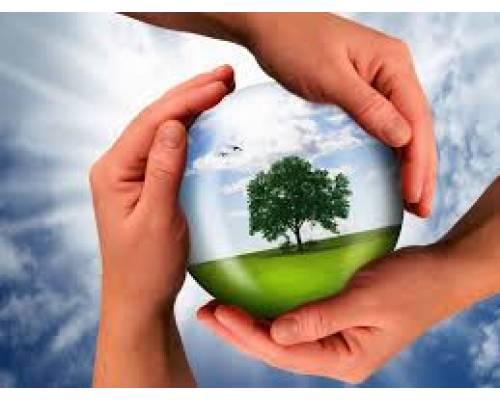 Чисте довкілля – запорука нашого здоров'я!