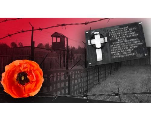 В Україні відзначають День пам\